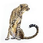 Holocene Cheetah. Desert learning centre. Copyright KJA artists